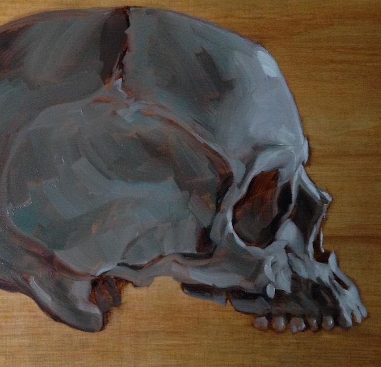 Alla Prima Skull (detail)    24 x 24   oil on canvas     2014